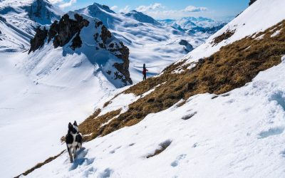 Spring ski touring in Davos Klosters The best reasons to do it